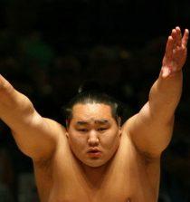 se retira el sumo asashoryu